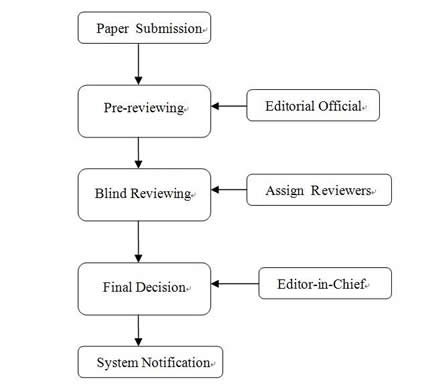 Essay peer review process